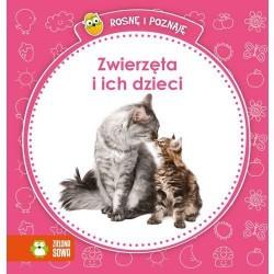 Zielona Sowa - 2842 - Książeczki dla Dzieci - Książeczka Edukacyjna - Rosnę i Poznaję - Zwierzęta i Ich Dzieci