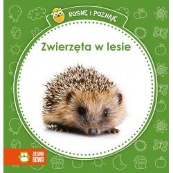 Zielona Sowa - 2859 - Książeczki dla Dzieci - Książeczka Edukacyjna - Rosnę i Poznaję - Zwierzęta w Lesie
