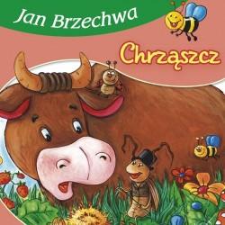 Skrzat Książeczki dla Dzieci Książeczka z Wierszykami JAN BRZECHWA Chrząszcz 4132