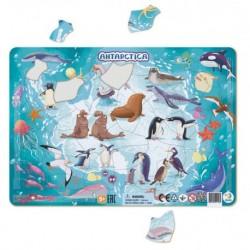 DODO Układanka Puzzle Na Podkładce Puzzle Ramkowe 53 Elementy Antarktyda 300176