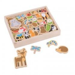 Bigjigs Toys DREWNIANE MAGNESY Zwierzęta Leśne BJ275