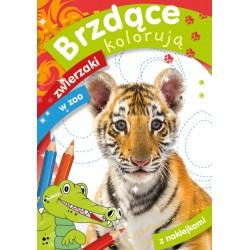 Skrzat Kolorowanka BRZDĄCE KOLORUJĄ Zwierzaki w Zoo 8676