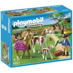 PLAYMOBIL 5227 COUNTRY Wybieg dla Koni