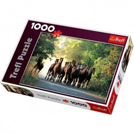 Trefl - 10168 - Puzzle 1000 - Ogiery Pełnej Krwi Angielskiej, Stadnina Koni Widzów, Polska