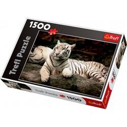 Trefl - 26075 - Puzzle 1500 - Tygrys Bengalski