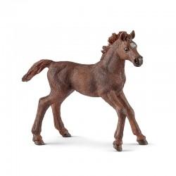 SCHLEICH 13857 - Figurka Konia - ŹREBIĘ PEŁNEJ KRWI ANGIELSKIEJ