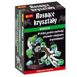 RANOK CREATIVE Zabawna Chemia Rosnące Kryształy BONSAI 1631