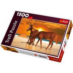 Trefl - 26093 - Puzzle 1500 - Rumaki na Plaży