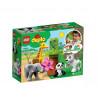 LEGO DUPLO 10904 Małe Dzikie Zwierzątka