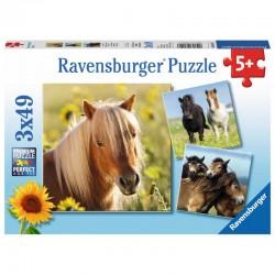 RAVENSBURGER Puzzle 3x49 KOCHANE KONIE 080113