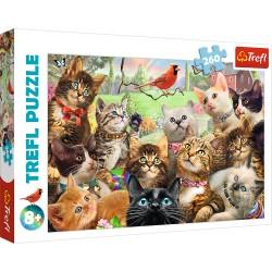 TREFL Puzzle KOTKI 260 el. 13241