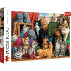TREFL Puzzle 1000 el. Premium Quality KOCIE SPOTKANIE 10555